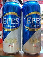 Efes Normal Kutu Bira